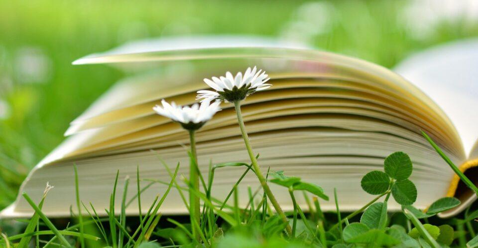 Światowy Dzień Książki i Praw Autorskich